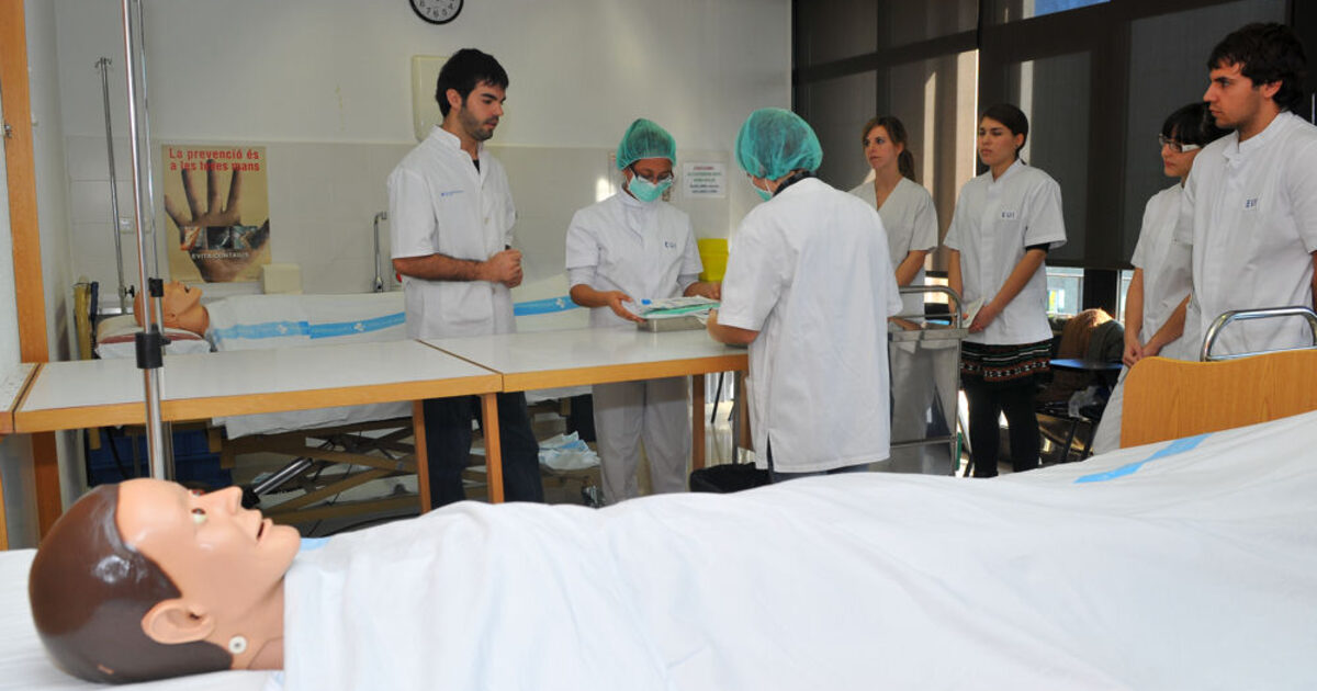 nurse practioner admission essay